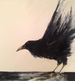 bird9
